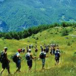 Ecoturismo: consigli per una vacanza in armonia con l'ambiente