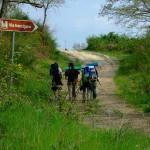 La Via Francigena: camminare nella storia