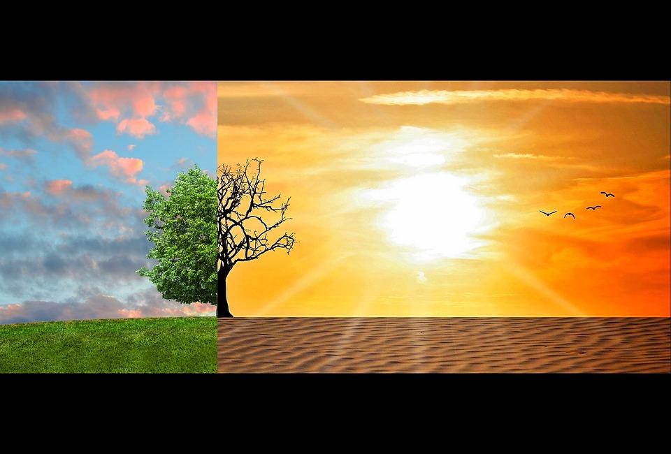 Cambiamenti climatici entro il 2050